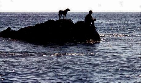 Brad and Louie on a rock in the ocean